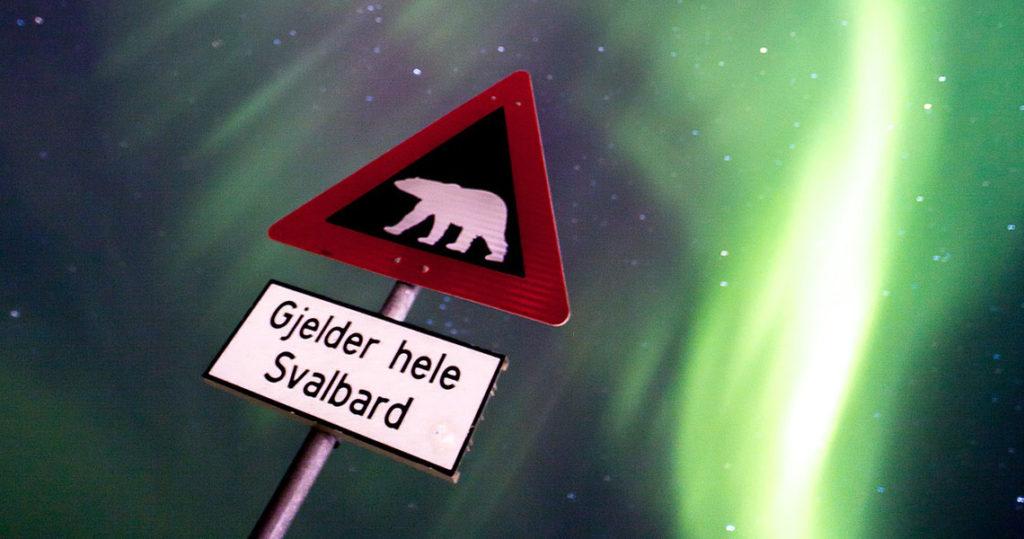 Op avontuur in Spitsbergen - Tekstenwereld